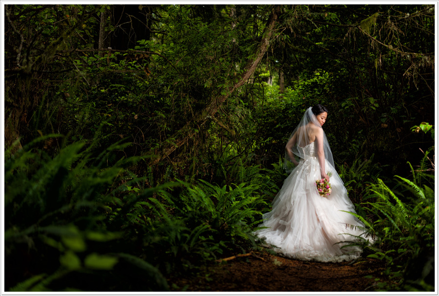 Wickaninnish Inn forest wedding