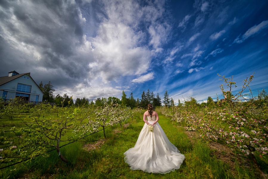 Sea Cider farm and Ciderhouse wedding 1
