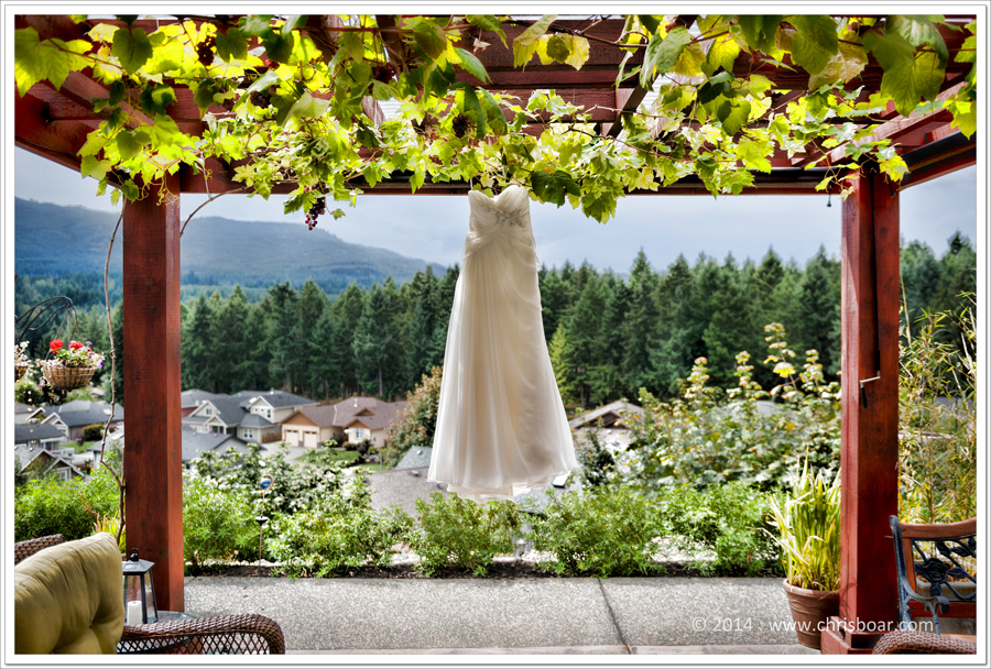 nanaimo-wedding-dress-hanging